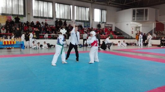 copa nacional de catalunya de taekwondo 2017 final de Ona